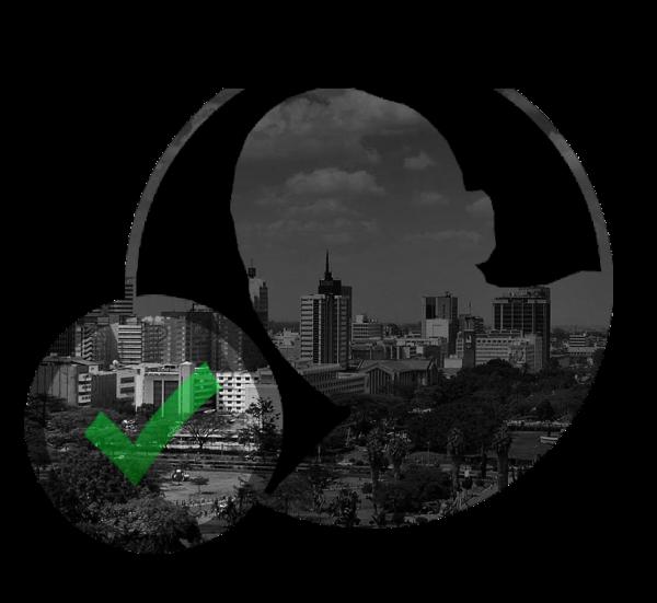 Professional cv writing services nairobi city kenya